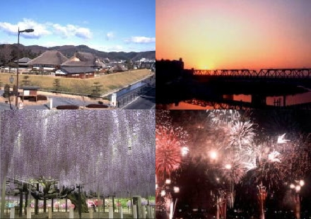 Four images. Building of Ashikaga Gakkou, Watarase River dyed in sunset, Wisteria at Ashika flower park and Fireworks.